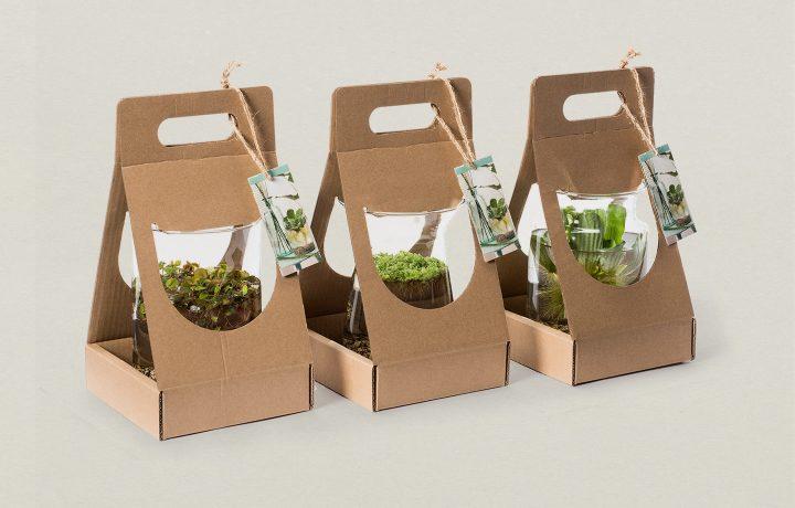 Floramedia_Produit_packaging_personnalise