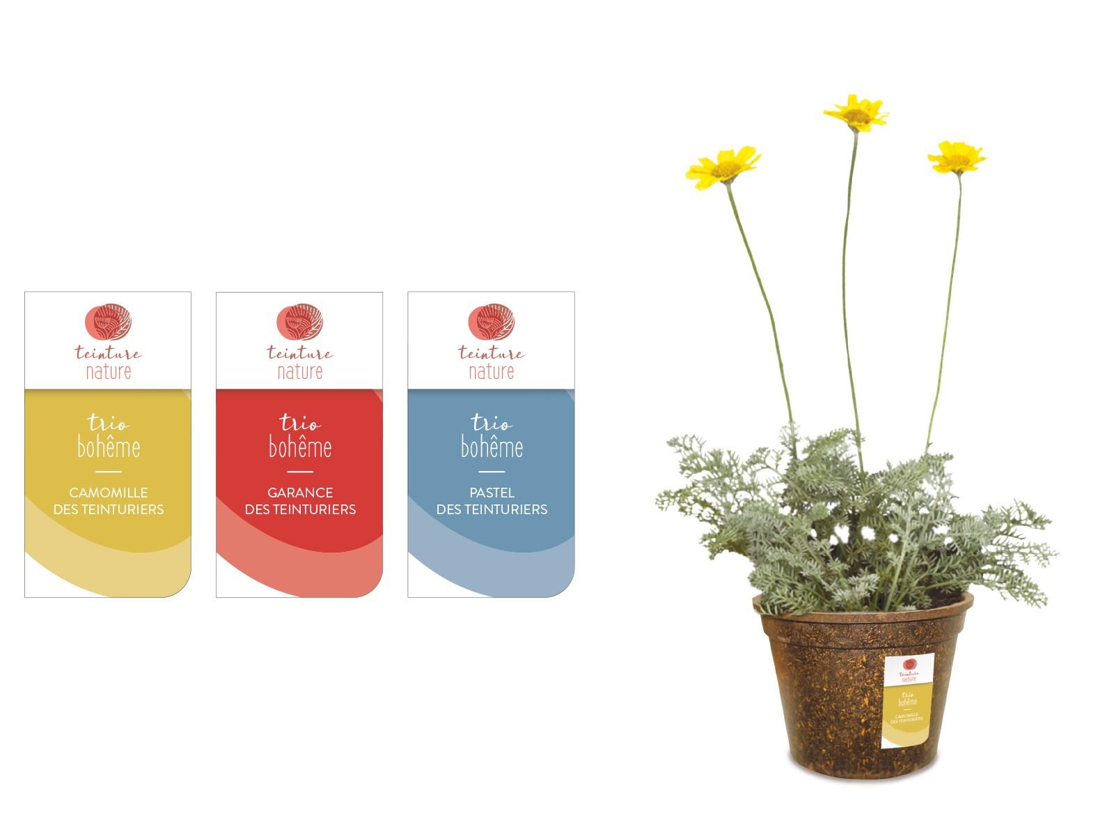 Floramedia Portfolio Concept Teinture Nature sticker