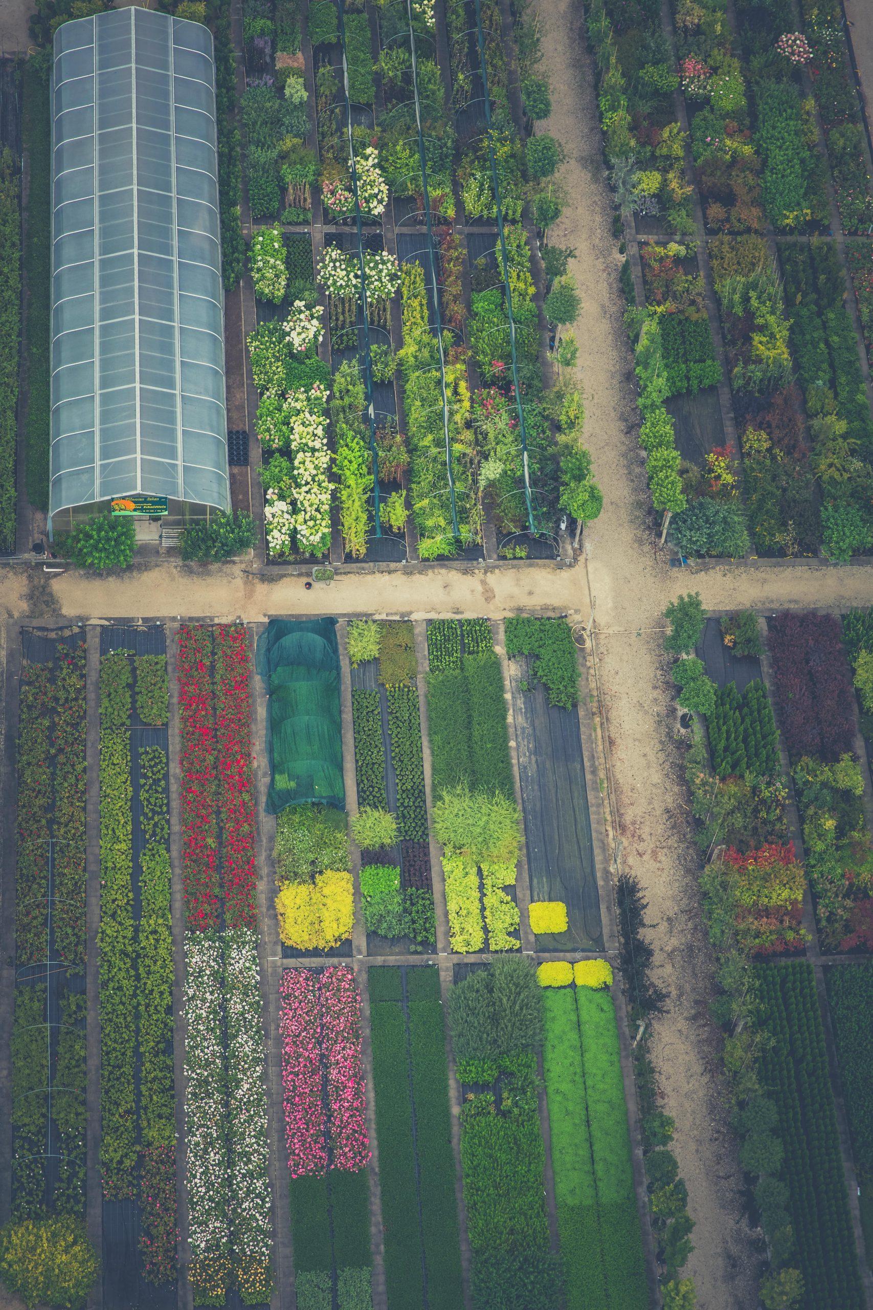 Production horticole ornementale france 2021