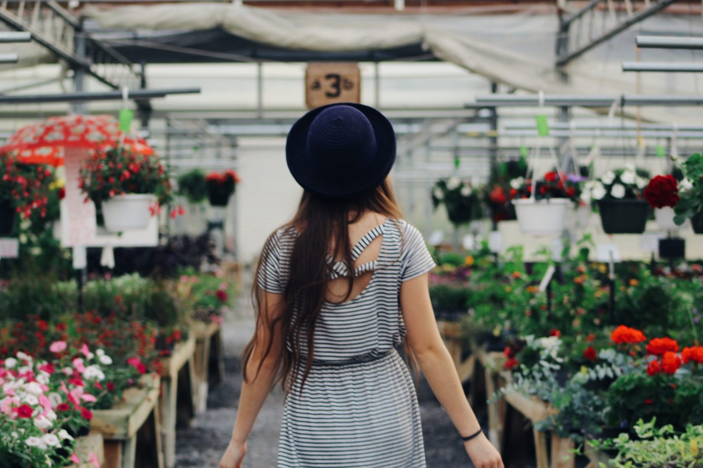 Blog Floramedia - Chiffres 2020 jardineries et graineteries